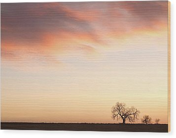 Three Trees Sunrise Sky Landscape Wood Print by James BO  Insogna