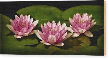 Three Water Lilies Wood Print by Susan Candelario