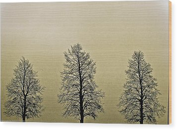 Threes Wood Print by Michael Nowotny