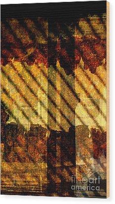 Through Glass And Metal Wood Print