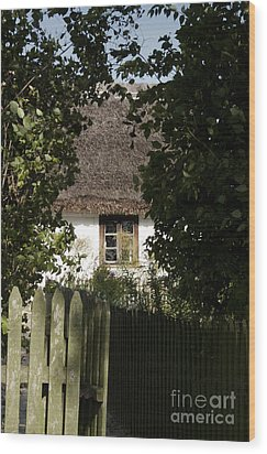 Wood Print featuring the photograph Through The Bushes To The Window by Agnieszka Kubica