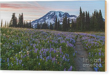 Through The Flowers Wood Print by Mike Reid