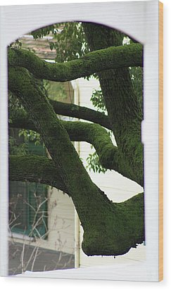 Wood Print featuring the photograph Through The Gate by Susan Alvaro