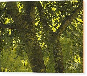 Through The Green Man's Eyes Wood Print by Tammy Herrin