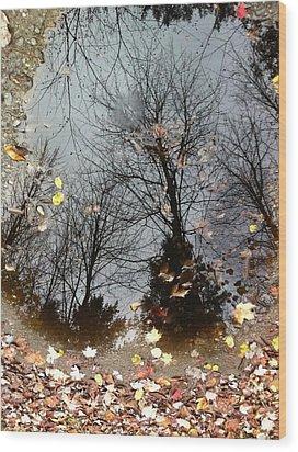 Through The Looking Glass Wood Print by Elijah Brook