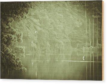 Through The Trees Wood Print by Kim Henderson