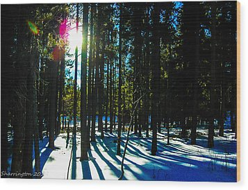 Wood Print featuring the photograph Through The Trees by Shannon Harrington