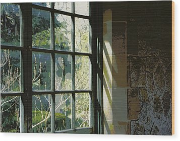 Wood Print featuring the photograph View Through The Window by Marilyn Wilson