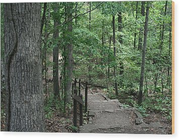 Through The Woods Wood Print by CGHepburn Scenic Photos