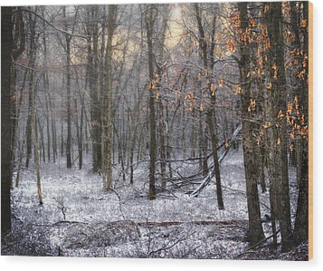 Wood Print featuring the photograph Through The Woods Into The Sunset by Yelena Rozov