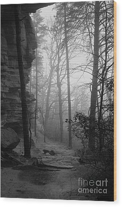 Through These Woods A Path Was Made Wood Print by Laurinda Bowling