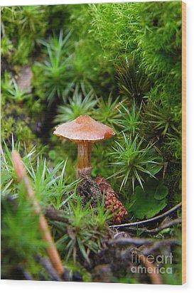 Thumbelina's Forest Wood Print