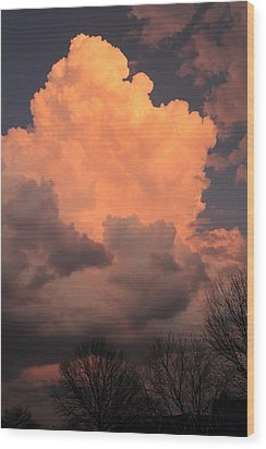Wood Print featuring the photograph Thunderhead In Twilight by Scott Rackers