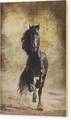 Thundering Stallion D6574 Wood Print by Wes and Dotty Weber