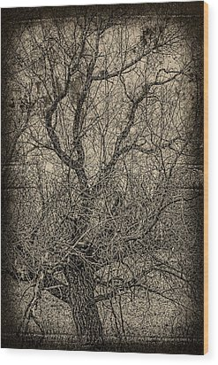 Tickle Of Branches  Wood Print by Jerry Cordeiro