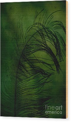 Wood Print featuring the photograph Tickled Green by Robin Dickinson