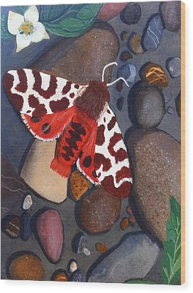 Tiger Moth On River Rocks Wood Print by Amy Reisland-Speer