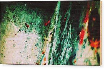 Tiibur Amantii Wood Print