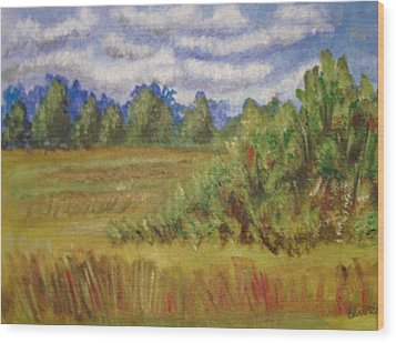 Tillar Field Wood Print by Belinda Lawson
