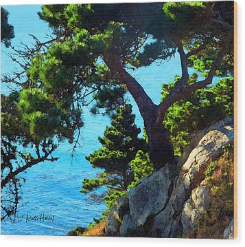 Timber Cove In Sonoma Coast Wood Print by Russ Harris