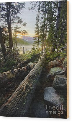 Timber Wood Print by Tyler Porter