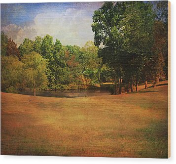 Timbers Pond Wood Print by Jai Johnson