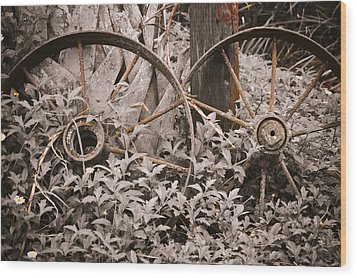 Time Forgotten Wood Print by Carolyn Marshall