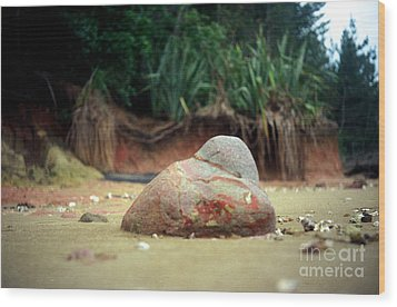 Wood Print featuring the photograph Tinopai Beach Rock by Mark Dodd