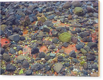 Wood Print featuring the photograph Tinopoi Beach Rocks by Mark Dodd