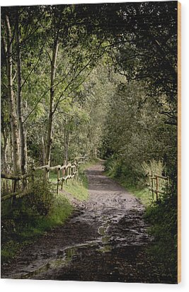 To The End Of September Wood Print by Odd Jeppesen