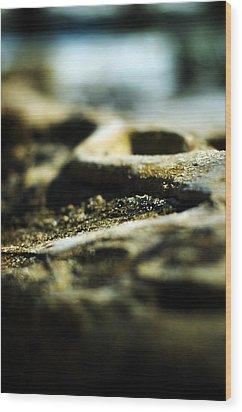To The Sea Wood Print by Rebecca Sherman