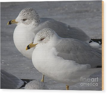 Togetherness Wood Print by Judy Via-Wolff