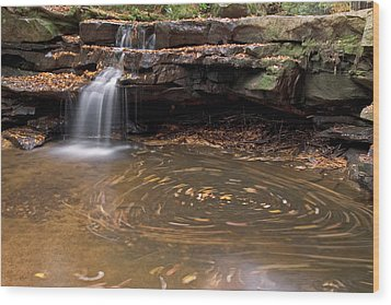 Wood Print featuring the photograph Tolliver Falls by Jeannette Hunt