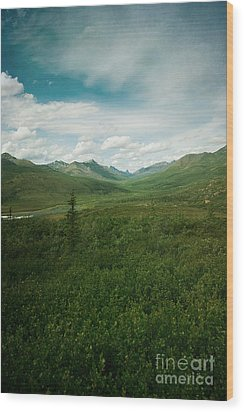 Tombstone Mountain Wood Print by Priska Wettstein
