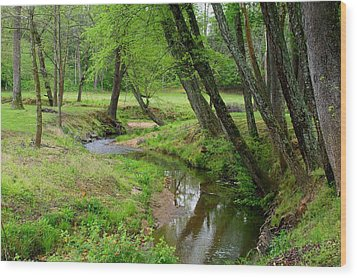 Wood Print featuring the photograph Toms Creek In Early Spring by Kathryn Meyer