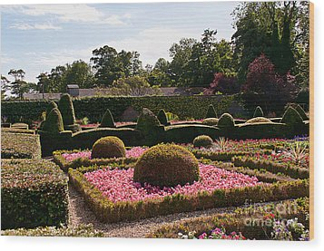 Topiary And Flower Beds 2 Wood Print