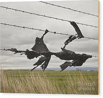 Torn Bags On A Barbed Wire Fence Wood Print by Paul Edmondson