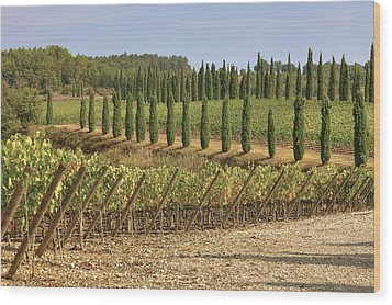 Toscana Wood Print by Joana Kruse