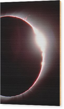 Total Solar Eclipse, Showing A Solar Flare Wood Print by Dr Fred Espenak
