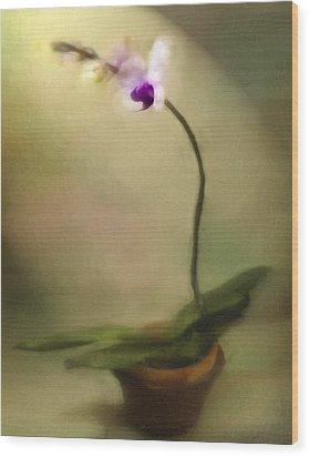 Toward The Light Wood Print by Jill Balsam