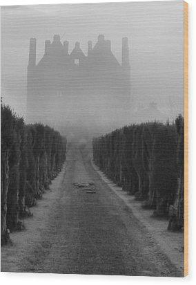 Tower In The Mist Wood Print by Debra Collins