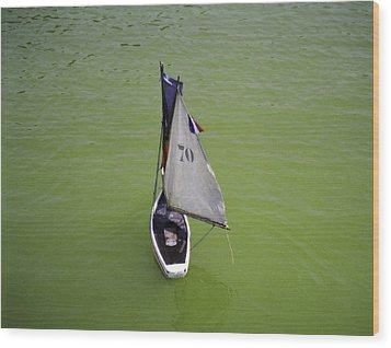 Toy Sailboat On Pond Wood Print by Donna Munro
