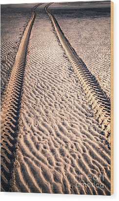 Tracks In The Sand Wood Print by Adrian Evans