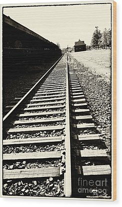 Tracks Of Our Ancestors Wood Print by Leslie Leda