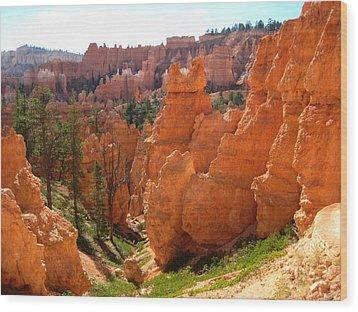 Trail View Bryce Canyon Wood Print