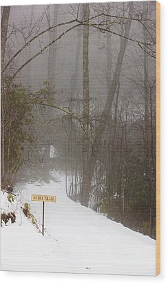 Trailhead Covered With Snow Wood Print by Will and Deni McIntyre
