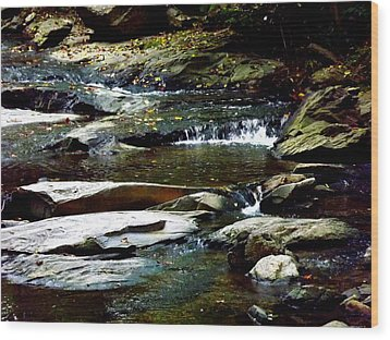 Wood Print featuring the photograph Tranquil River In Asheville Nc by Jodi Terracina