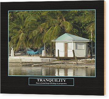 Tranquility Wood Print by Kevin Brant