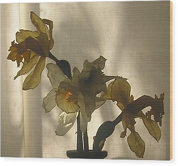 Translucent Wood Print