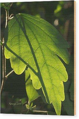 Transparent Glow Iv Wood Print by Rotaunja